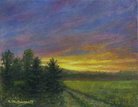 Field Road by Kathleen McDermott