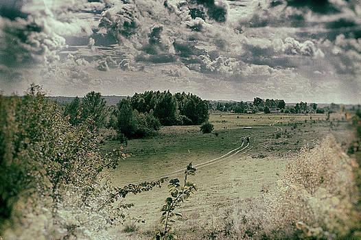 Field road. Zamistya, 2013. by Andriy Maykovskyi