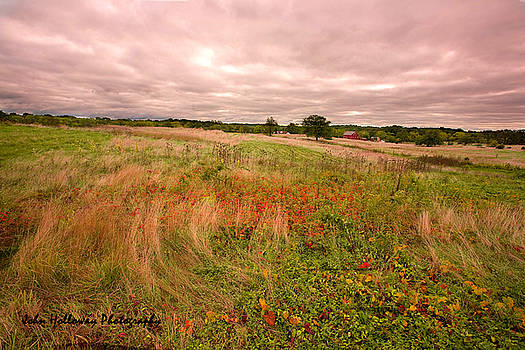 Field Where Heroes Fought by John Holloway