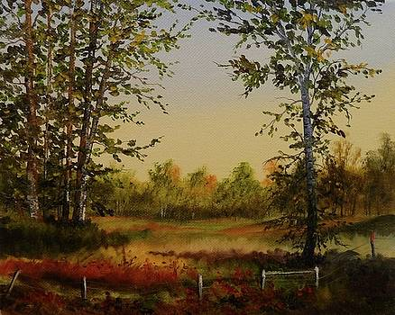 Fields And Trees by Judy Bradley