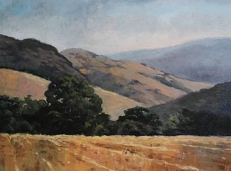 Fields of California by Maralyn Miller