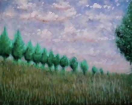 Fields of Summer by Matt Mercer
