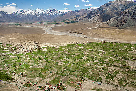 Fields of Zangla, Zanskar, 2008 by Hitendra SINKAR