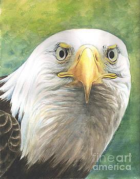 Fierce Eagle by Sara Alexander Munoz