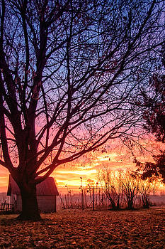 Fiery Morning Sunrise by Lars Lentz