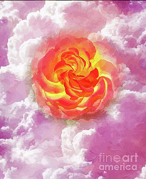Fiery Rose In A Bed of Pink Clouds by Clive Littin