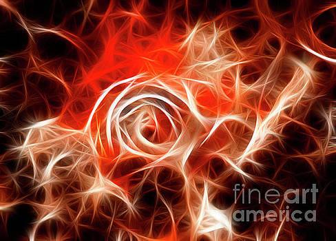 Vivian Christopher - Fiery Rose