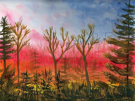 Fiery Sunset by Sharon E Allen