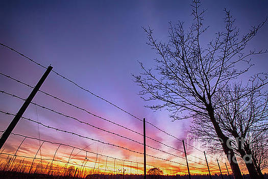 Simon Bratt Photography LRPS - Fiery Norfolk sunset viewed through barbed fence
