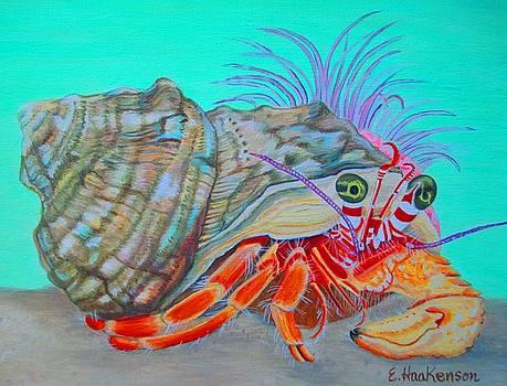 Fiesty Hermit Crab by Elaine Haakenson
