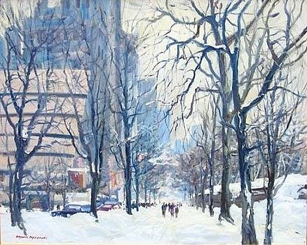 Fifth Avenue and Central Park by Bogomir Bogdanovic
