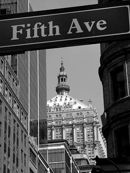 Fifth Avenue by Elizabeth Hardie
