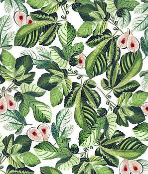 Fig Garden by Uma Gokhale