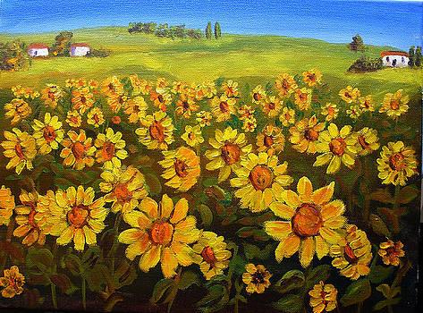 Mary Jo Zorad - Filed of Sunflowers