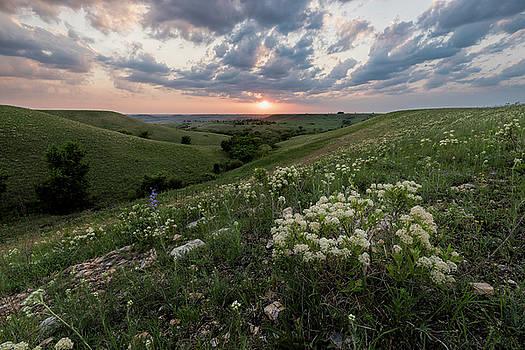 Finally, Spring by Scott Bean