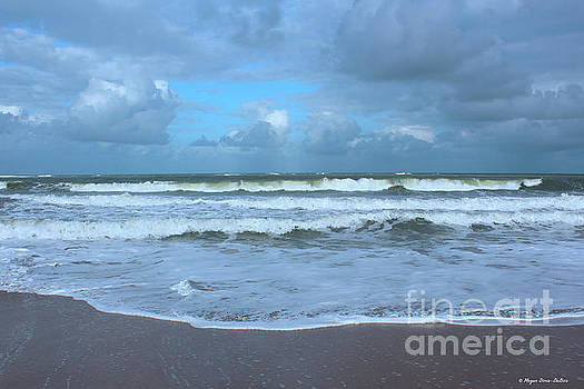 Find Your Beach by Megan Dirsa-DuBois