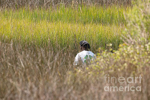Dale Powell - Finding Spartina Grass