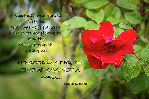 Fine Up Against A Wall by Mary Lee Dereske