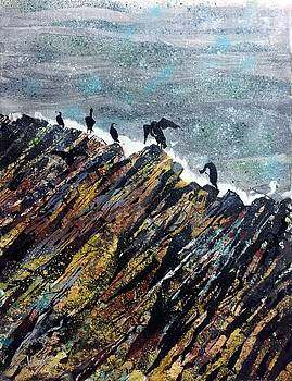 Fingal's Gatekeepers, Staffa Shags by Chris Walker