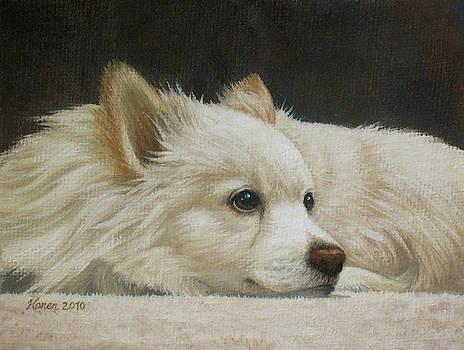 Finley by Karen Coombes
