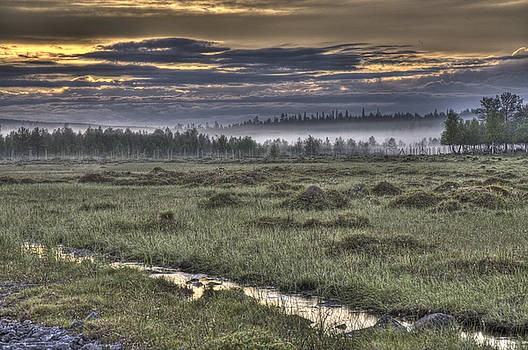 Heiko Koehrer-Wagner - Finnish Moorland
