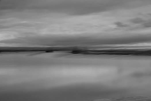 Fir Island State of Mind by Bob Stevens