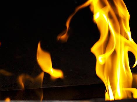 Fire Dance by Bessie Reyes