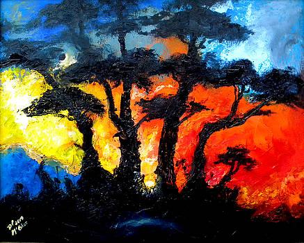 Fire by David McGhee