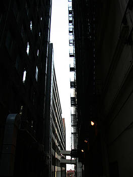 Fire Escapes by Turtle Caps