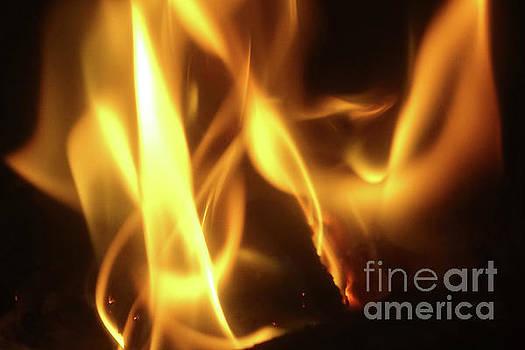 Fire  Feuer by Eva-Maria Di Bella