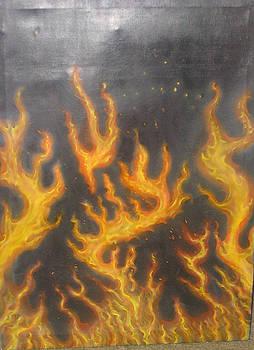 Fire Frie Fire  by Stuart Meek