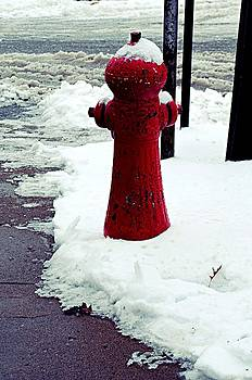Fire Hydrant by Renae Sears