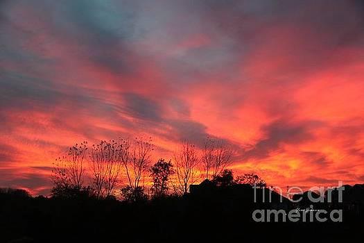 Fire in sky by Yumi Johnson