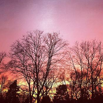Fire In The Sky by Christina Schott