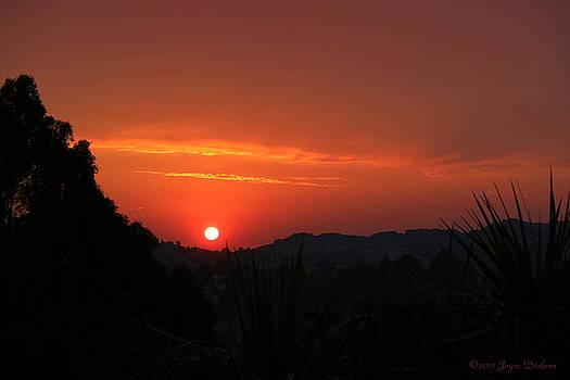 Fire In The Sky El Sobrante by Joyce Dickens