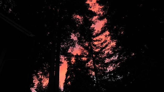 Fire in the Sky Felton Sunset 2 by Larry Darnell