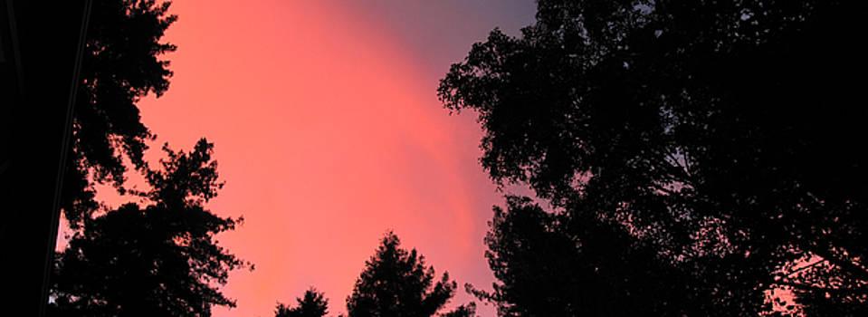 Fire in the Sky Felton Sunset by Larry Darnell