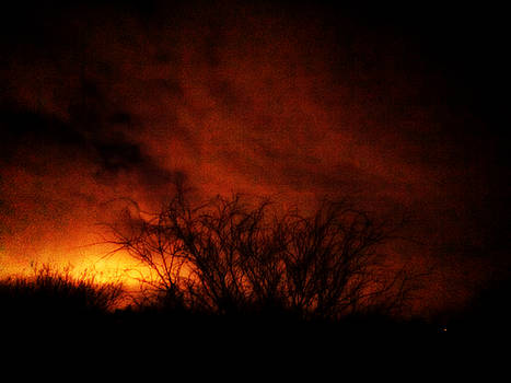 Fire in the Sky by Nature Macabre Photography