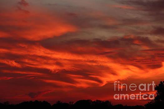 Fire in the WNY Sky by Tony Lee