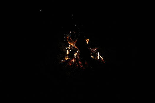 Fire Light by Craig Butler