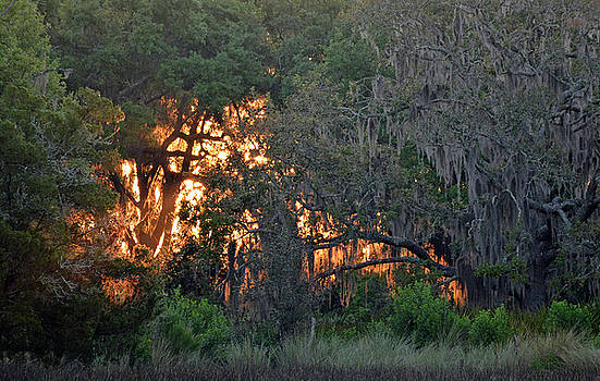 Fire Light Jekyll Island 03 by Bruce Gourley