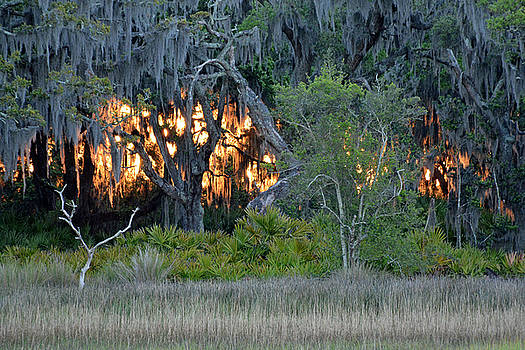Fire Light Jekyll Island by Bruce Gourley