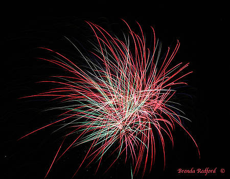 Fire Lines by Brenda Redford