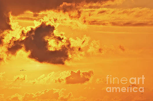 Fire on sky by Angela Doelling AD DESIGN Photo and PhotoArt