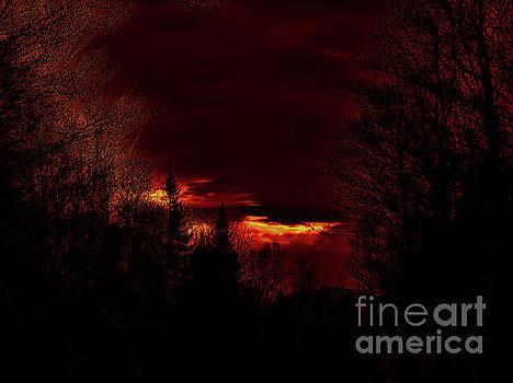 Fire Sky by Jessica Wood