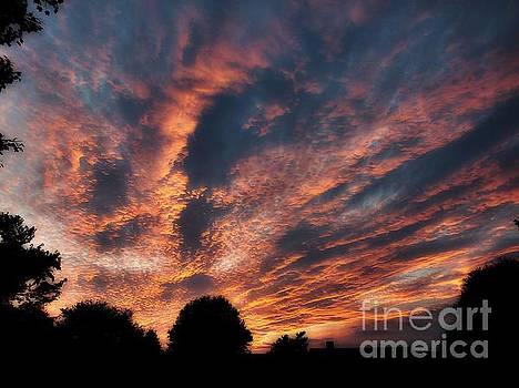 Fire Swept Sky  by Christy Ricafrente