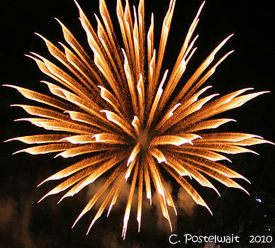 Fire Works 5 by Carolyn Postelwait