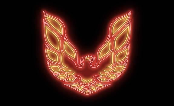 Ricky Barnard - Firebird Neon Sign