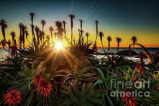 Firecracker Sunset by Gregory Schaffer
