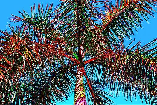 Fired Up Palm by Keri West